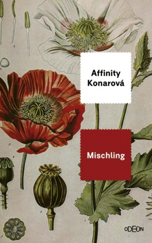 Mischling, Affinity